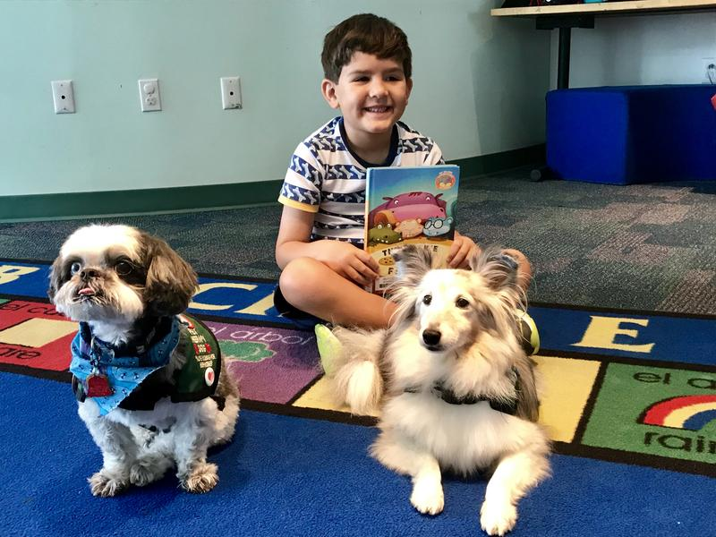 Therapy Dogs Helping Kids In Broward