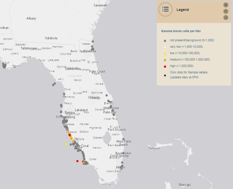 Most Sea Turtle s For Single Red Tide Event | WLRN Sea Turtle Map on sea turtles of the world, loggerhead map, squid map, freshwater map, green turtle map, hawksbill turtle map, snapping turtle map, sun map, sea turtles and humans, rhinoceros map, diamondback terrapin map, sea turtles habitat, leatherback turtle map, painted turtle map, seahorse map, octopus map, sea turtles live how long, butterfly map, elephant map, bog turtle range map,
