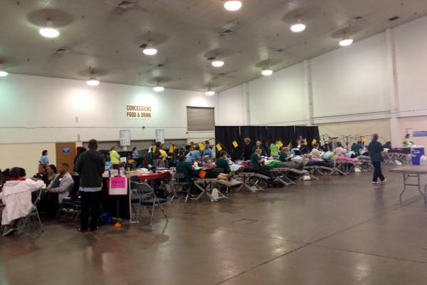 """The Florida Dental Association's """"Mission of Mercy"""" event at the Florida State Fairgrounds."""