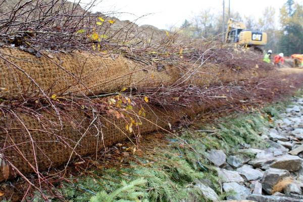 Soil wrapped in biodegradable coconut fiber is layered on willow branches at the Kahnderosa Campground in north Idaho.