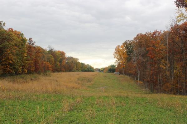 The pipeline easement on Baldwin's property.
