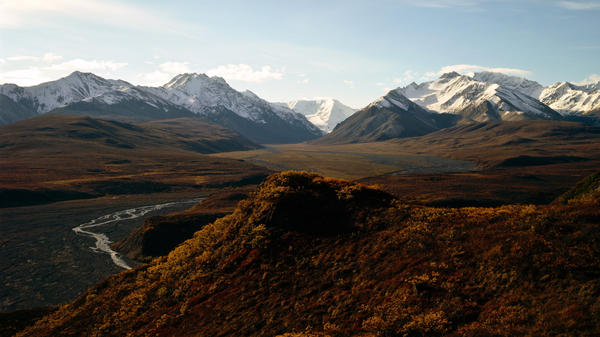 Alaska: home to Denali National Park and Preserve, grizzly bears and some very pricey health insurance.