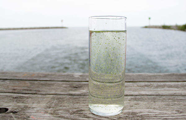 A sample of Lake Erie water.