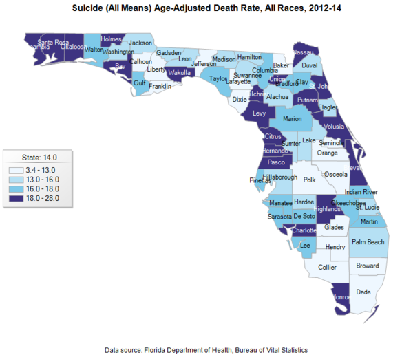 Florida suicide rates by county are shown for every 100,000 individuals. The age-adjusted rates show youth 21 and younger.