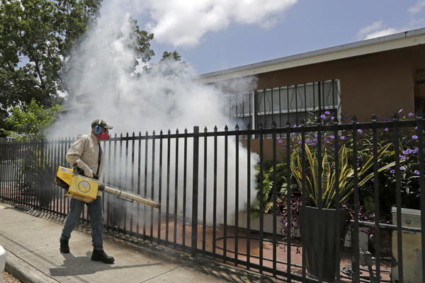 Authorities have intensified efforts to fumigate against mosquitoes in the Wynwood area after reports of first locally-transmitted cases,