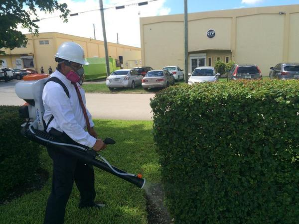 Allan Cespedes, a manager at Orkin Pest Control in Miami, demonstrates how his company sprays foliage to control Zika-carrying Aedes aegypti mosquitoes.