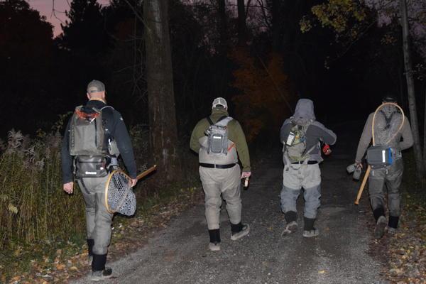 A group of anglers walks to Elk Creek