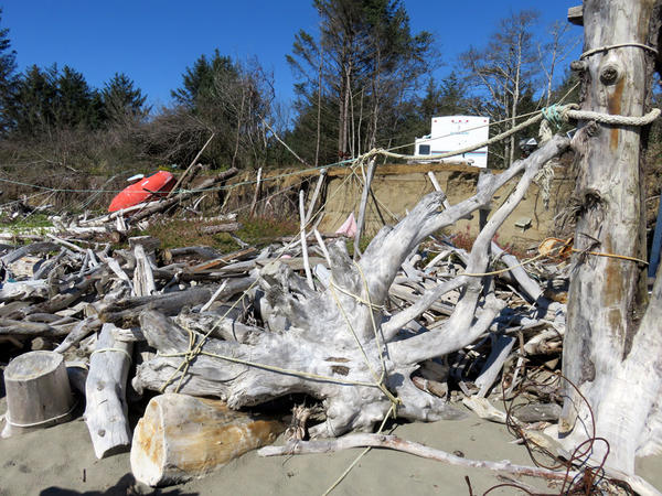 People have tied together driftwood and stumps as a makeshift defense to armor the base of the low bank.