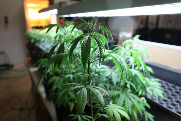 <p>The Oregon Liquor Control Commission has issued a ban on marijuana-infused alcohol.</p>
