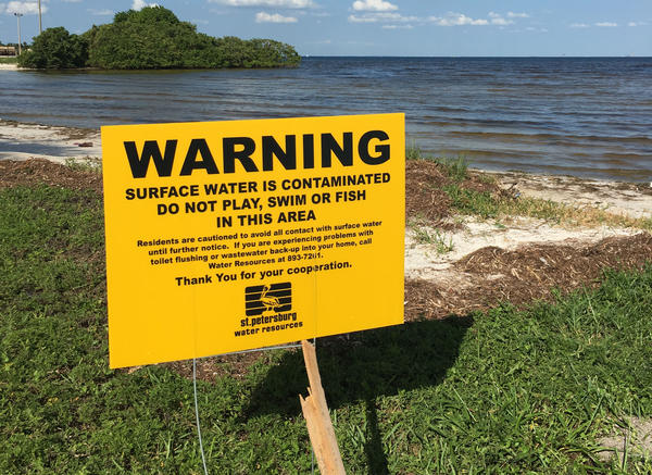 Signs at places like Lassing Park Beach in St. Petersburg warned residents to stay out of the water last fall, after Hurricane Hermine led several cities and counties to dump hundreds of millions of gallons of sewage.
