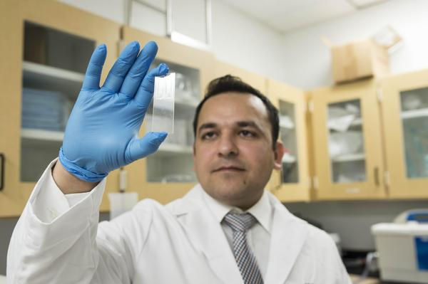 Dr. Waseem Asghar looking at part of the device that could possibly help detect the Zika virus.