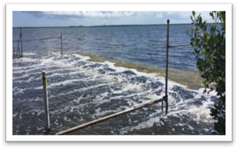 "Some canals in the Keys are getting ""air curtains"" - bubbler systems that prevent weeds from drifting in to the canals."