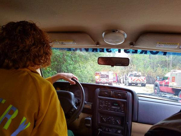 Samantha Quinn with the Florida Forestry Service surveys Golden  Gate Estates