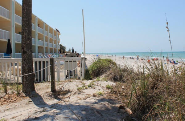 A photo taken in that exact same location at Indian Rocks Beach in 2017 to show the impact of renourishment projects over the years.