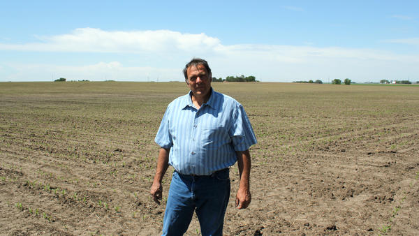 Farmer Tim Mueller raises corn and soybeans in Columbus, Nebraska. He is hoping to get into the chicken business by signing a contract to raise birds for a subsidiary of Costco.