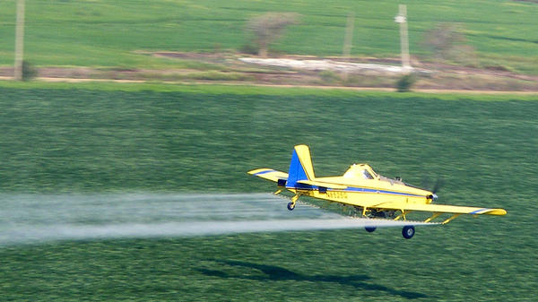 A pilot for Earl's Flying Service sprays chemicals on a field in southeastern Missouri.
