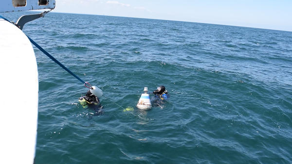 Divers at the buoy marking the site of the wreck
