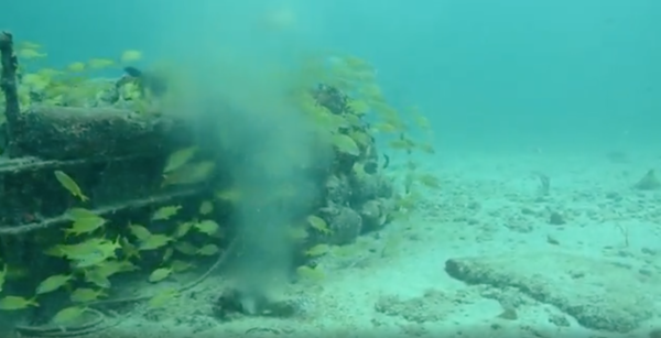 This is the sewage leak off Fisher Island, recorded by a Miami Waterkeeper diver.