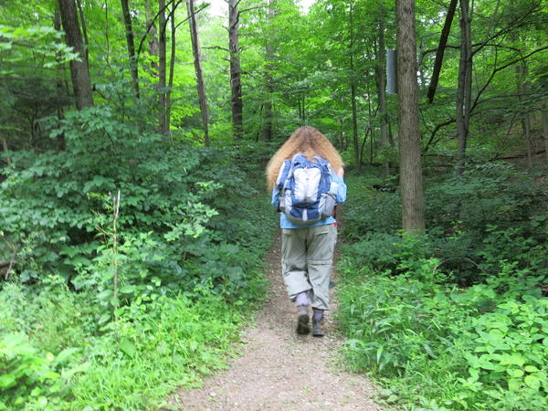 Elizabeth Farnsworth led the way, heading to a spot where she last saw a rare Glaucescent Sedge.