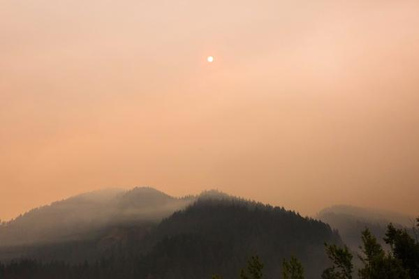 <p>The Eagle Creek Fire as seen from the Bonneville Fish Hatchery, Sunday, Sept. 3, 2017.</p>