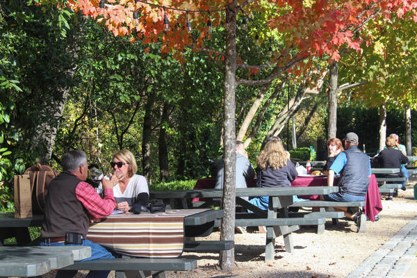"""Bill and Debbie Hart (front) from Springfield MO visit Buena Vista in Sonoma, Calif. on Nov. 7, 2017. """"There's been some devastation but so many of the wineries are still open for business and we wanted to do our part to help support them,"""" said Debbie Hart."""