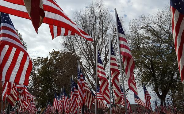 The Flags of Love flapped in the breeze for the final time in 2017 on Veterans Day