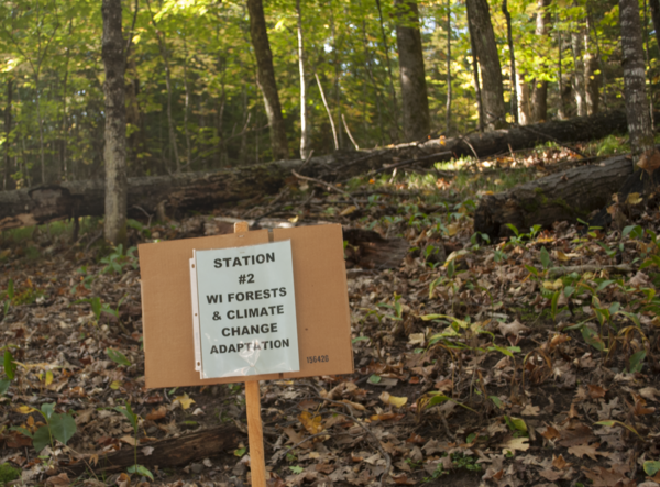 Landowners discussed forest management topics at stations amid the forest.