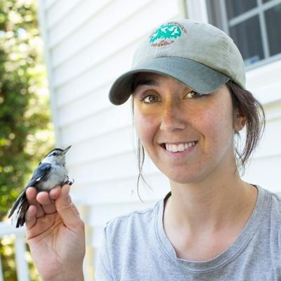 Researcher Desiree Narango with a white-breasted nuthatch.