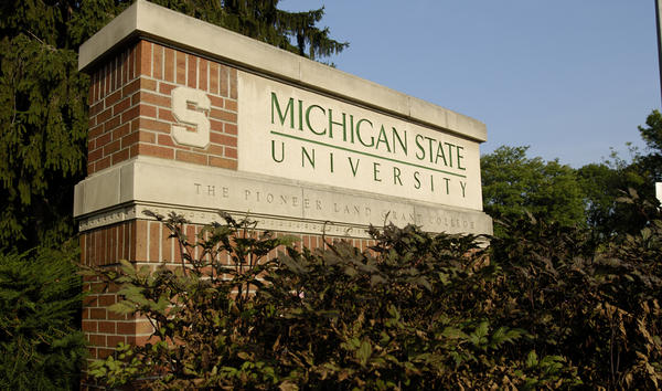 Lauren Allswede was a sexual assault counselor at Michigan State University for seven years.