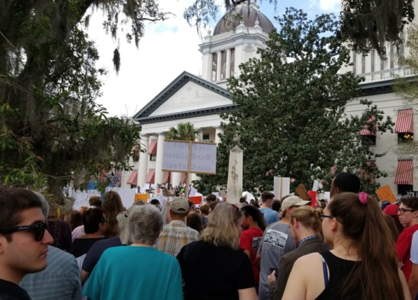 Protesters filed the area around the State Capitol in Tallahassee.