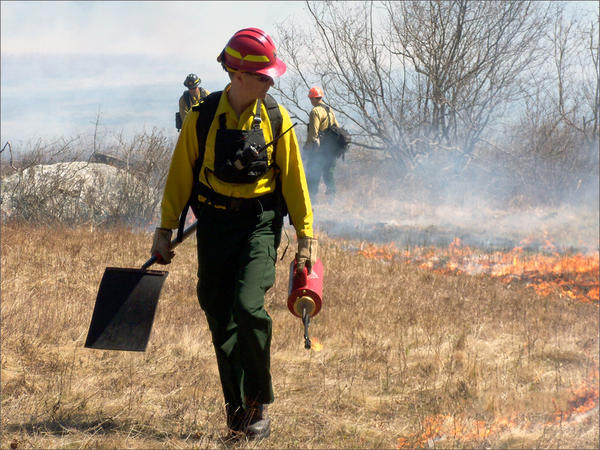 File photo. Washington's Department of FIsh and Wildlife plans to set controlled fires on on more than 1,000 acres in Okanogan, Ferry and Pend Oreille counties.