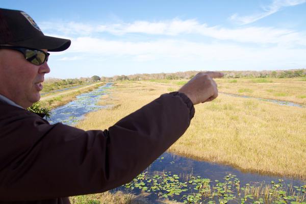 Deputy Project Leader Steve Henry points out the boundaries of Arthur R. Marshall Loxahatchee National Wildlife Refuge on Jan. 30, 2018.
