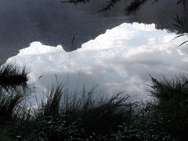 <em>Cloud and Light</em>, by Tshio Hosokawa, was written for the ancient Japanes instrument called the <em>sho</em>.
