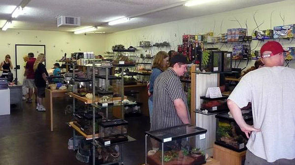 "Customers look at the inventory in Ken ""The Bug Guy"" MacNeil's pet store in Tucson, Ariz."