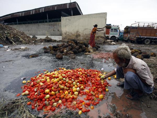 Rotten jackfruit and tomatoes are sorted at a dump in New Delhi. India loses an estimated 40 percent of its produce harvest for lack of infrastructure. And Americans waste about 40 percent of our food.