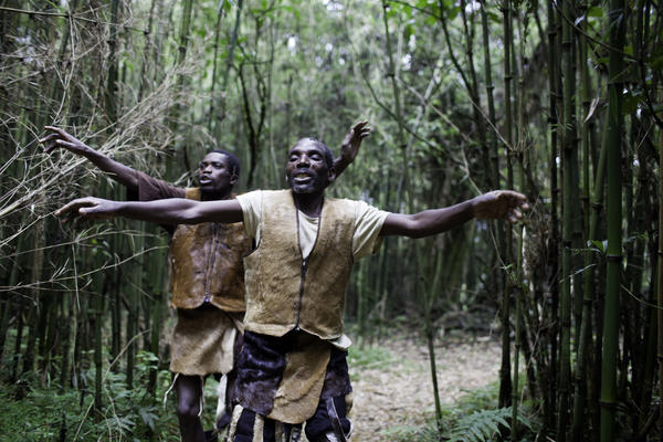 Intimately tied to the mountains and forests, the Batwa used to perform daily dances in honor of their land. Entering their previous home, men perform a welcoming dance.