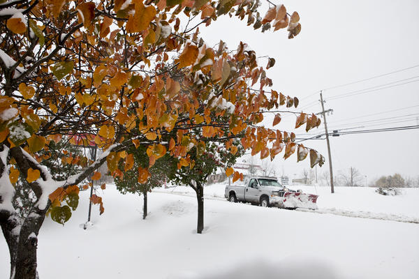 West Virginia is expecting six to 12 more inches of snow throughout Tuesday. Higher elevations are more likely to get snowfall upwards of two or three feet.