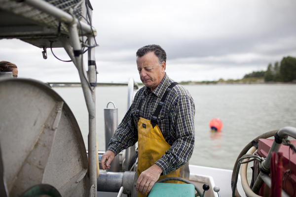"""Capt. Gordon Botkin, aboard the Miss Delta in the Fraser River near Vancouver, is helping researchers study the sockeye salmon population. The MSC recently certified sockeye as """"sustainable,"""" even though scientists argue that their population is declining."""