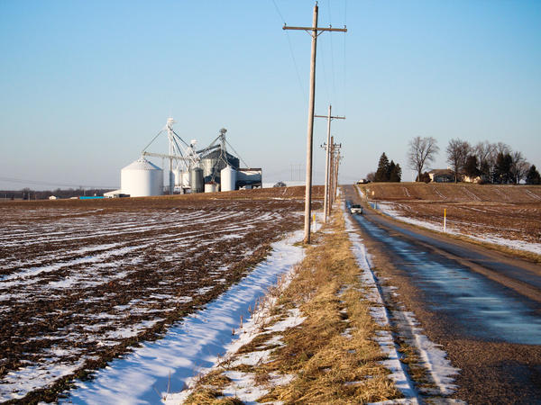 Bowman bought ordinary soybeans from this small grain elevator and used them for seed.