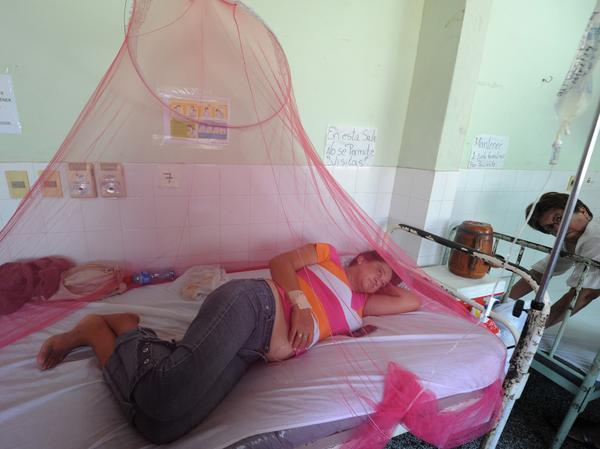 Dengue fever patients are treated in a hospital in Asuncion, Paraguay, in January.