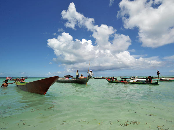 Fishermen arrive on Wakatobi island in Sulawesi waters off eastern Indonesia in 2009. In the 19th century, the island's rich and unique biodiversity helped Wallace understand how species adapted to their environment — and how regions are defined by the animals that live in them.