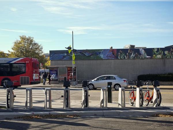The Capital Bikeshare outside the Anacostia Metro Station in Washington, D.C.