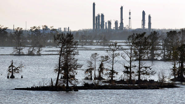 Man-made canals built for the oil and gas industry cut through wetland. The industry argues those canals aren't to blame for coastal erosion.