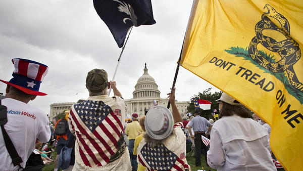 Tea Party activists rally in front of the U.S. Capitol in June 2013.