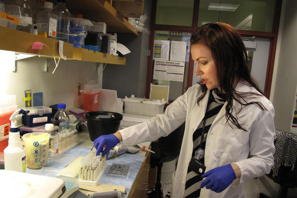 Vanessa Hubbard-Lucey is also a post-doc at NYU's Langone Medical Center. She works for a professor studying inflammatory bowel disease.