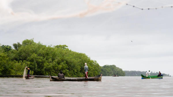 Fishermen cast their nets out in Bluefields Bay on Nicaragua's Caribbean coast.