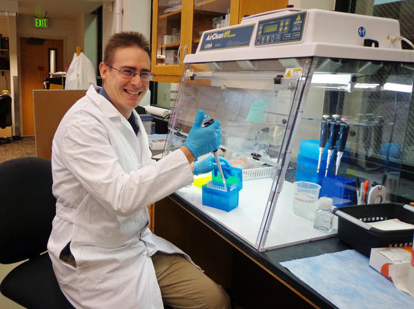 Rob Knight, co-founder of the American Gut Project at the University of Colorado in Boulder, works in the lab where the samples are processed.