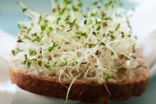 """For something many deem a """"health food,"""" sprouts regularly appear on official outbreak lists."""