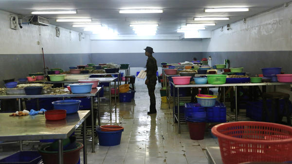 """A Thai soldier stands between abandoned workstations during a raid on a shrimp shed in Samut Sakhon, Thailand. The Associated Press won a Pulitzer Prize for public service for its report """"Seafood from Slaves."""""""