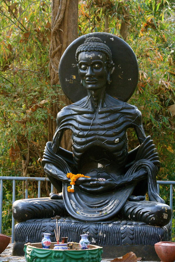 A statue depicts an emaciated Buddha, who denied himself food as a form of asceticism before finding enlightenment.